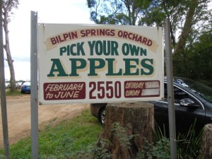 Bilpin Springs Orchard